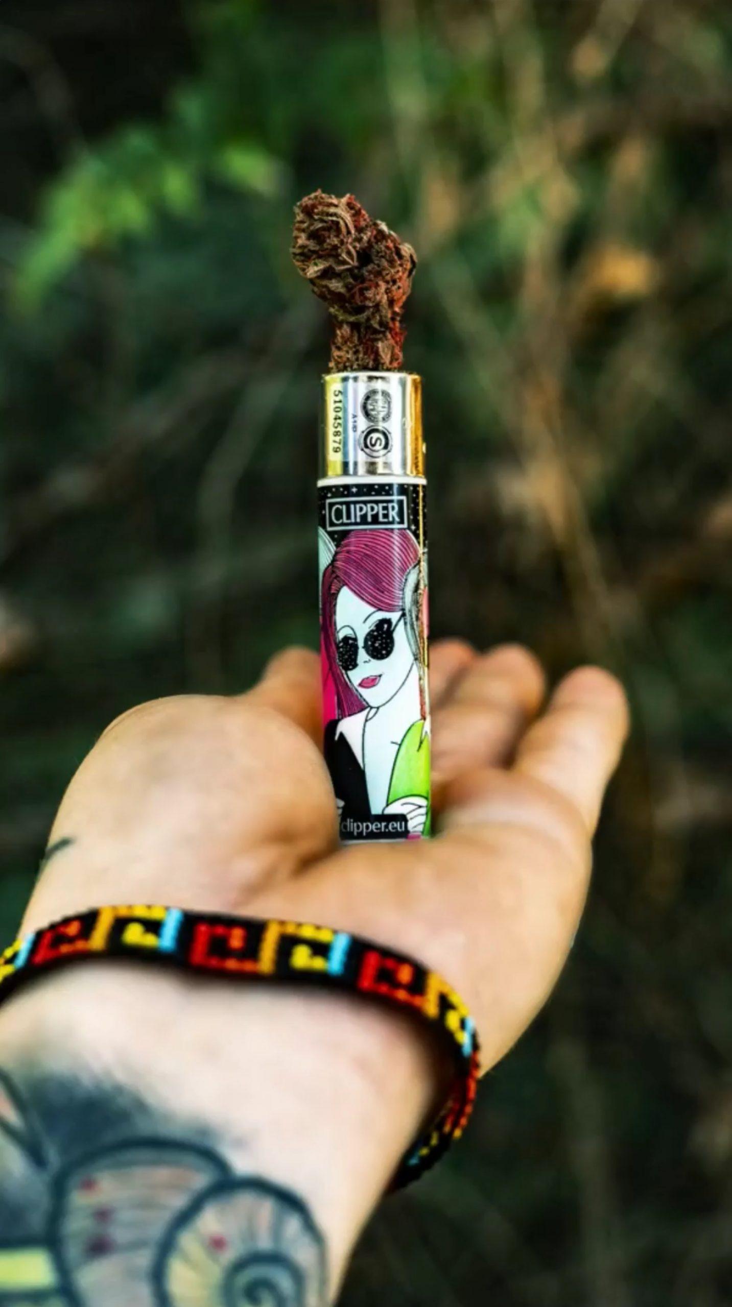parainfernalia-marketing-cannabis